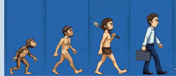 Evolution of Learning